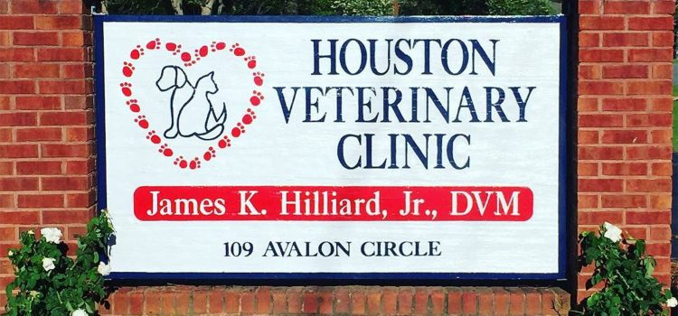 Houston Veterinary Clinic